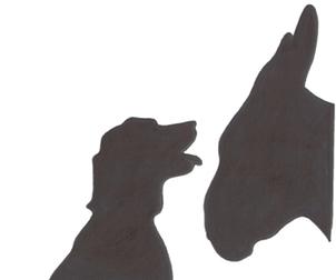Asini & Cani normal