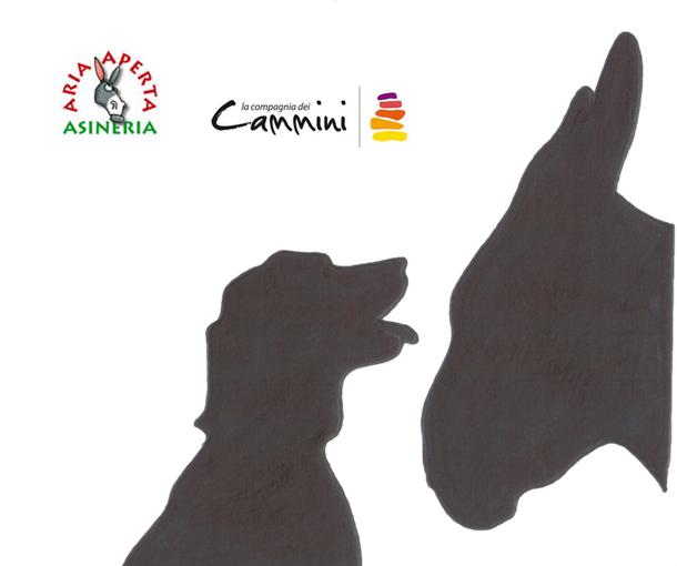 Asini & Cani