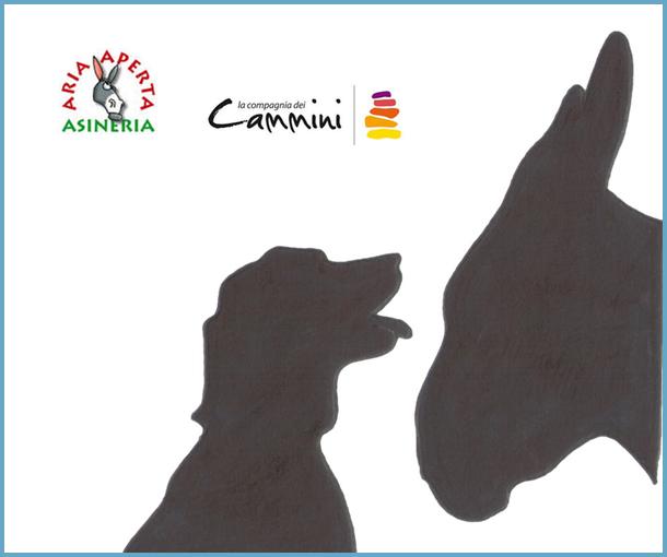 Asini & Cani 2016