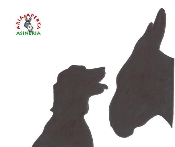 Asini-Cani
