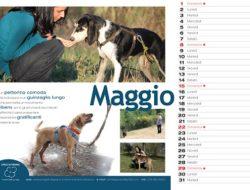 CanileFagnano_Calendario_2016_Def copia